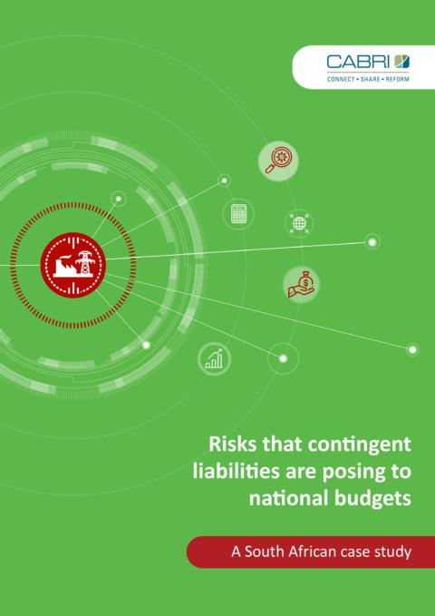 Risks That Contingent Liabilities Are Posing To National Budgets A South African Case Study