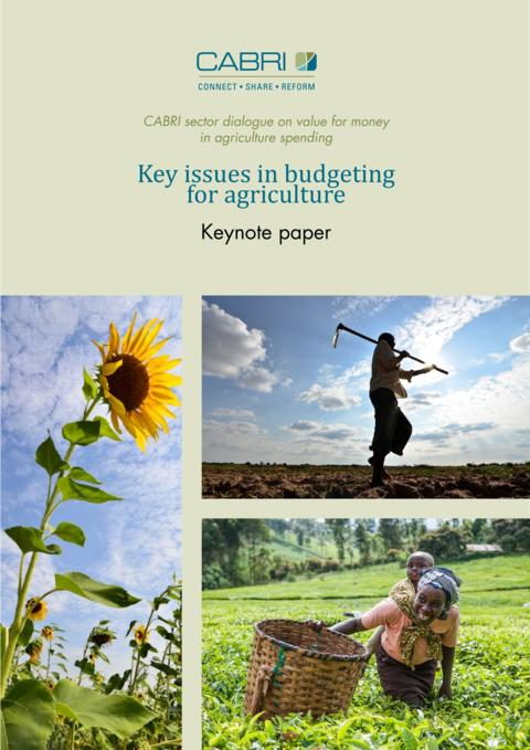 Report 2014 Cabri Value For Money Agriculture 3Rd Dialogue English Cabri Keynote Paper 1 Budgeting For Agriculture Engl