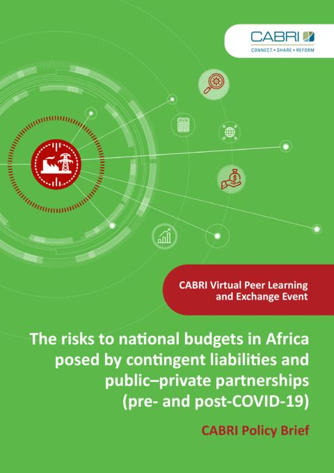 Policy Brief The Risks To National Budgets In Africa Posed By Contingent Liabilities And Public–Private Partnerships Pre And Post Covid 19