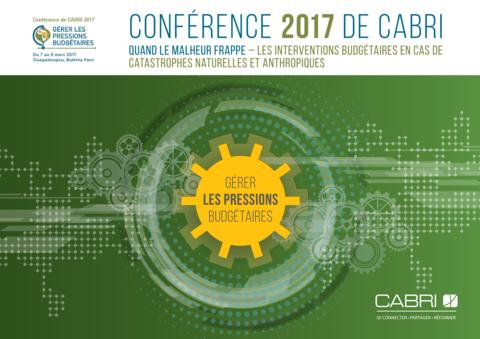 Cabri Conf Summary Disaster French Final