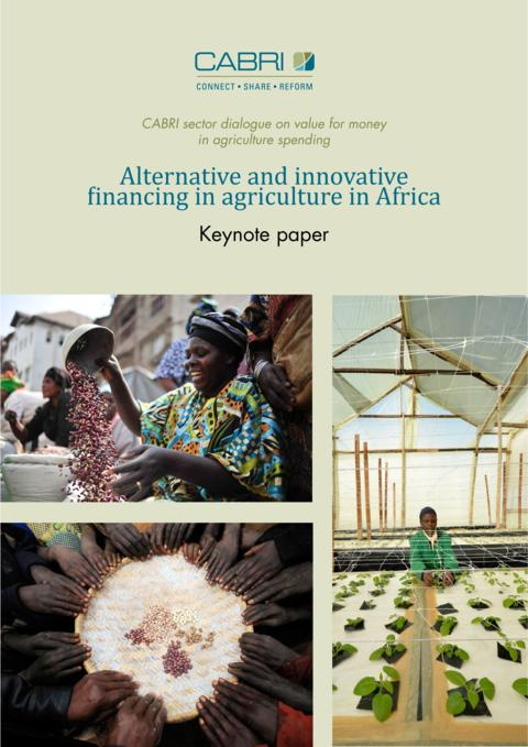 Report 2014 Cabri Value For Money Agriculture 3Rd Dialogue English Cabri Keynote Paper 2 Alternative Financing Engl