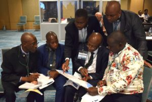 Building Public Finance Capabilities in Africa