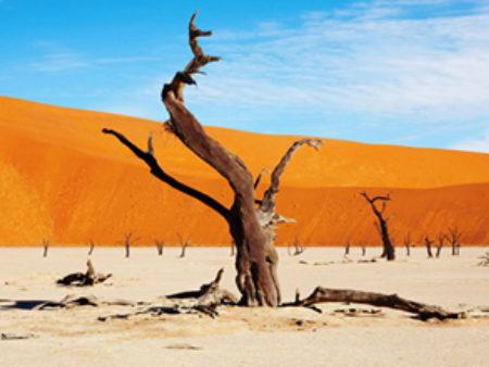 Images Blog Namibias Reform Journey Towards Programme Based Budgeting