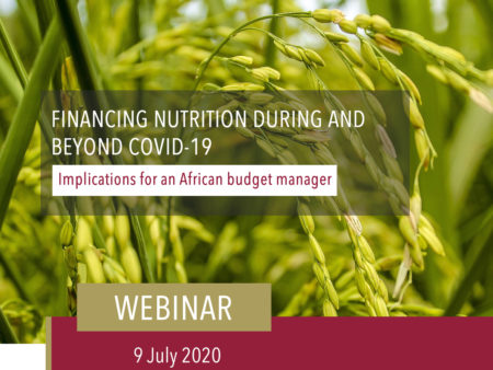 Holding Slide Financing Nutrition During And Beyond Covid 19